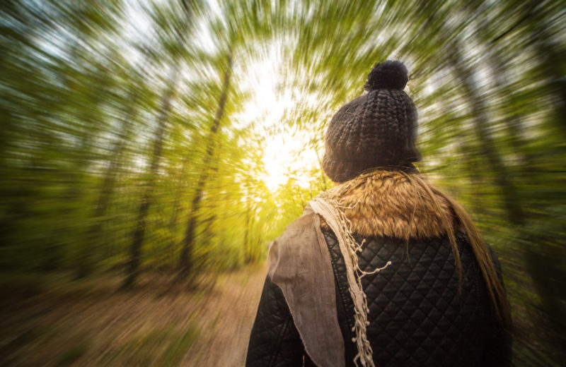 crazy-psychedelic-vision-walk-in-the-forest-picjumbo-com